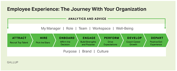 Gallup Employee Experience Chart