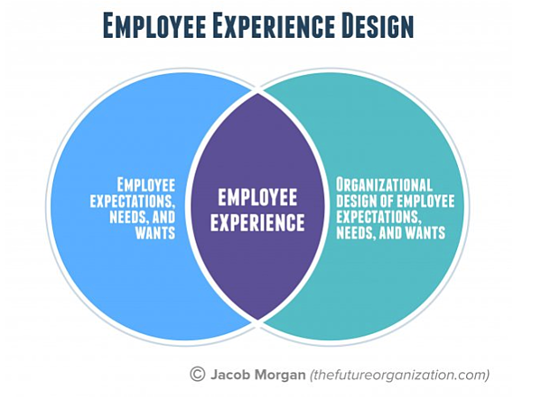 jacob morgan employee experience